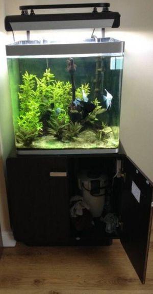 Japanese Fluval Osaka aquarium 41 gallon for Sale in Hendersonville, TN