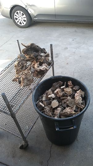 OLIVE TREE WOOD CHIPS for Sale in La Verne, CA