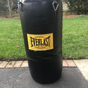 Everlast Punching Bag for Sale in Montclair, NJ