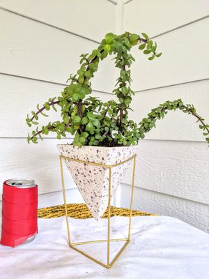 Trailer Elephant Bush Succulent Plants in Triangular Pyramid Ceramic Planter Pot with Stand-Real Indoor House Plant for Sale in Auburn, WA