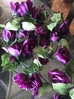 Purple rose vine for Sale in Chambersburg, PA