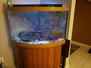 55 gallon bow front corner tank with stand for Sale in Akron, OH