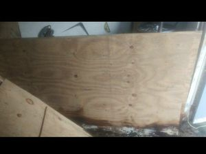 Free Wet Plywood for Sale in Tampa, FL