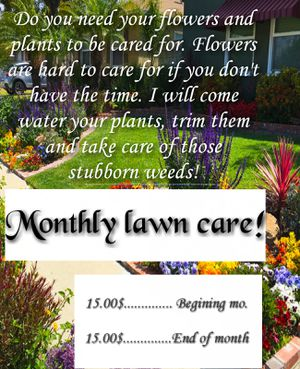 Monthly yard care for Sale in Glendale, AZ