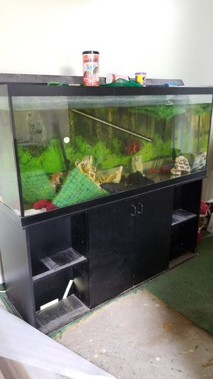 100 gallon aquarium with filters and stand for Sale in Fayetteville, GA