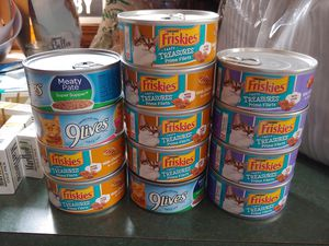 Huge Covered cat liter box and cat food for Sale in Silver Spring, MD