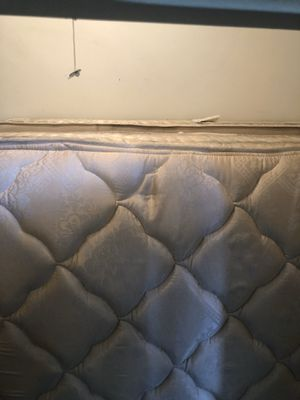 Full mattress and box spring! for Sale in Scottsdale, AZ