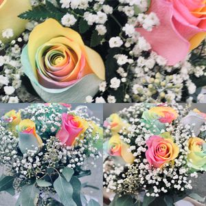 pastel rainbow roses for Sale in BETHEL, WA