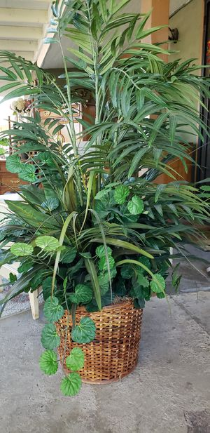 Beatiful fake plant for Sale in Avondale, AZ