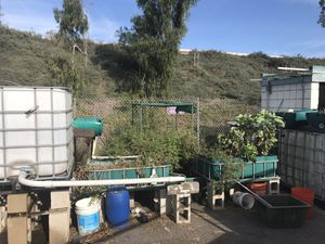 Aquaponics system for Sale in Escondido, CA