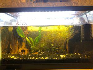 10gallon fish tank set for Sale in Seattle, WA