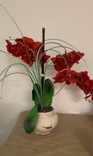 Artificial plant for Sale in Reston, VA