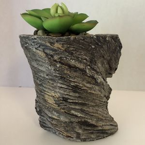 🙋‍♀️ Faux Succulent In Tree Bark for Sale in Hollywood, FL