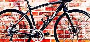 FREE bike sport for Sale in Lena, LA