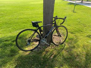 Aliez specialized road bike PICE IS NEGOTIABLE or a trade for a kx125 for Sale in Arvada, CO