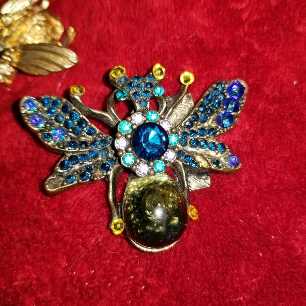 Insect with Unique jewels medallion