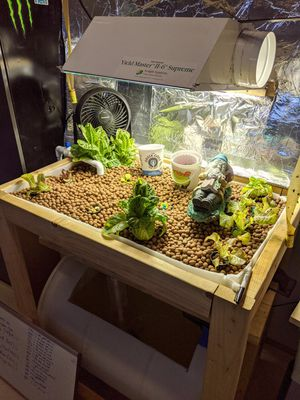Grow Light and Ballast with extra bulb $95 for Sale in Bremerton, WA