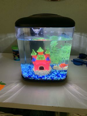 Goldfish with tank and filter. for Sale in Seattle, WA