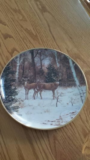 Collector Plate for Sale in Cashmere, WA