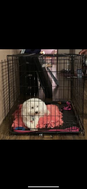 Large Kennel for Sale in Mesquite, TX