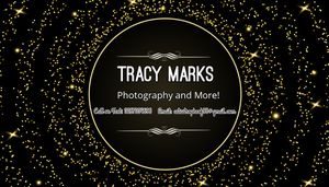 Photography for Sale in Abilene, TX