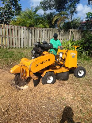 Stump grinding for Sale in Hialeah, FL