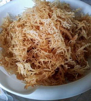 1lb Raw Sea Moss for Sale in Clinton, MD