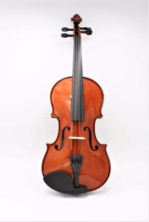 Violin- Santa Rina for Sale in Littleton, CO