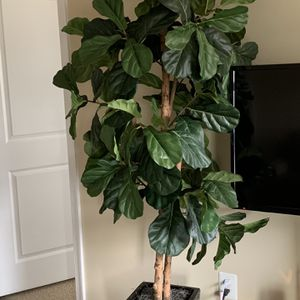 Fake Tree Plant for Sale in Bowie, MD