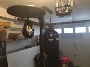 TKO speed bag and punching bag for Sale in Linden, NJ