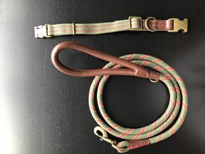 Leash and matching collar for Sale in Alexandria, VA