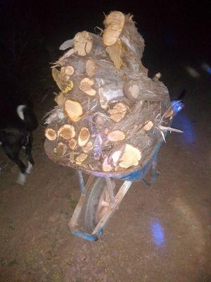 Wheelbarrow of already cut wood $20 for Sale in Vernon, AZ