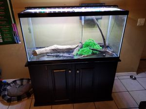 75 gallon aquarium and stand for Sale in Seffner, FL