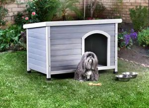 Contemporary Grey Solid Wood Pet House for Sale in Ontario, CA