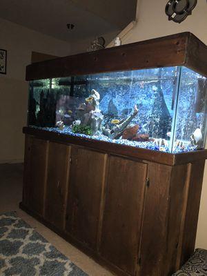 120 gallon Fish tank and stand for Sale in Dallas, TX