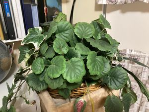 Fake Plant Decor for Sale in Kissimmee, FL
