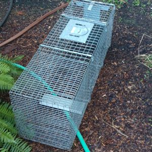 Live Animal Trap for Sale in Oregon City, OR