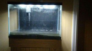 20 gallon fish tank/stand/light for Sale in Boston, MA