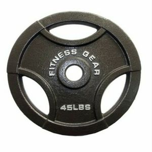 Fitness Gear 2x45lbs Olympic Grip Weight Plates for Sale in Everett, WA