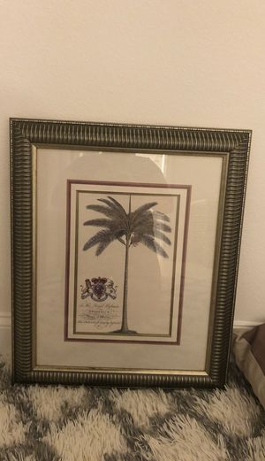 Frame for Sale in Clearwater, FL