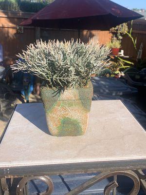 Silk Flower Pot for Sale in Orange, CA