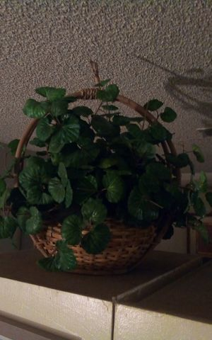 Artificial plant for Sale in Fresno, CA