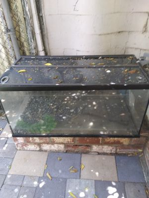 Fish tank with light and filter mid condition for Sale in Irwindale, CA
