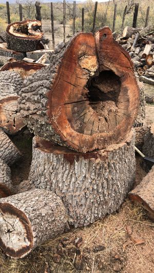 Oak firewood for Sale in Globe, AZ
