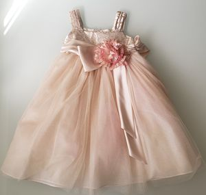 Flower Girl Dress (Chantilly Place) Size 4T for Sale in North Miami Beach, FL
