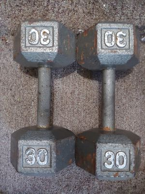 30lb dumbbells weights for Sale in Clearwater, FL