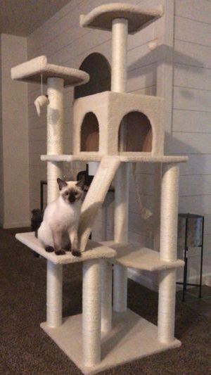 Cat tree 40$ new in box for Sale in Portland, OR