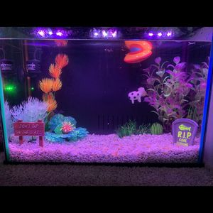 It's a self clean RGB glow fish fish tank for Sale in San Jose, CA