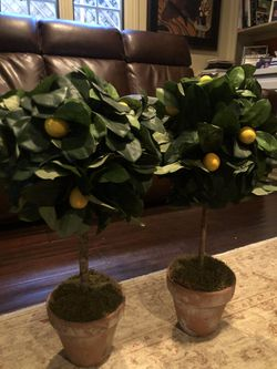 Pair of silk lemon topiary trees for Sale in San Diego,  CA