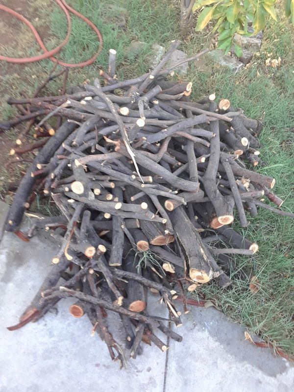 Mesquite wood for fire
